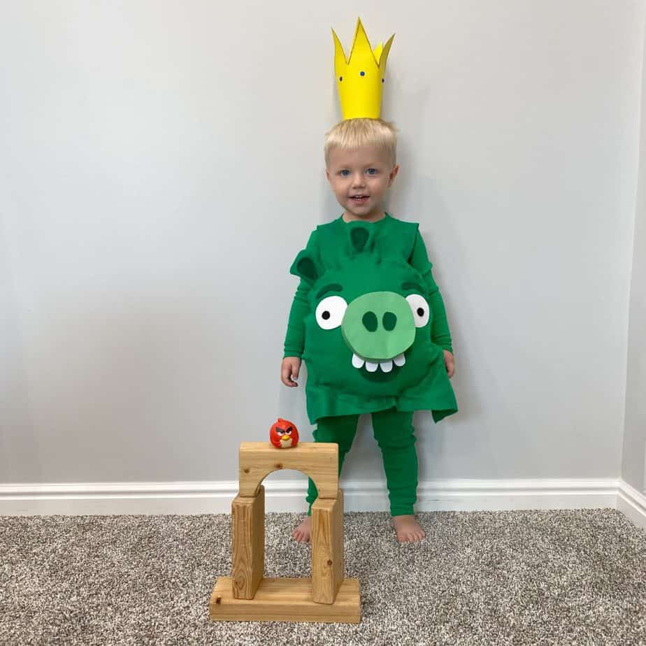 King Pig - Angry Birds Costume