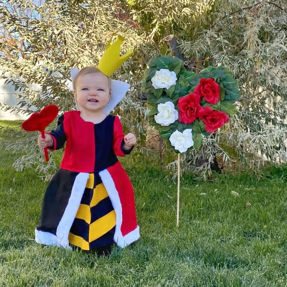 Queen of Hearts Costume from Alice In Wonderland